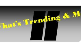 What's Trending & More for Access Indy Use